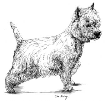 West Highland Terrier Puppy Receipt Book